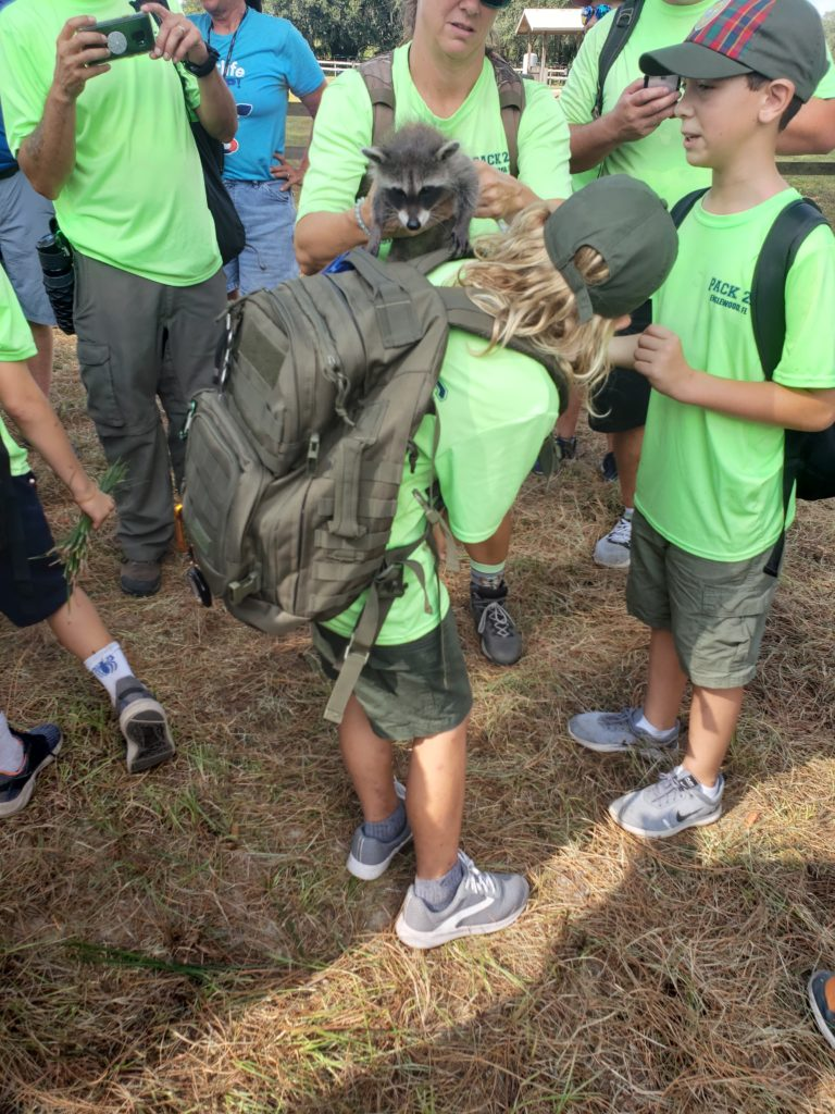 Baby Racoon on boy from boy scout troop 26.